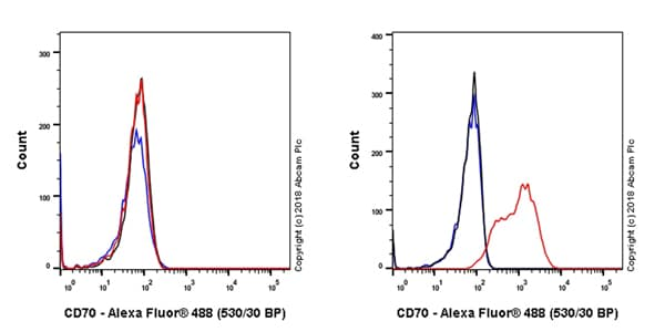 Flow Cytometry - Anti-CD70 antibody [EPR21946-290] - BSA and Azide free (ab239348)