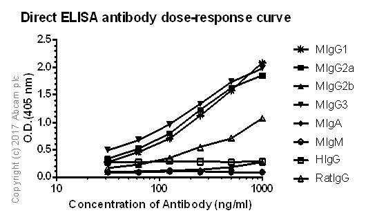 ELISA - Rabbit monoclonal [M111-2] Anti-Mouse IgG1, IgG2a, IgG3 (ab239415)