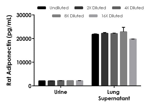 Interpolated concentrations of native Adiponectin in rat urine and cell culture supernatant samples.