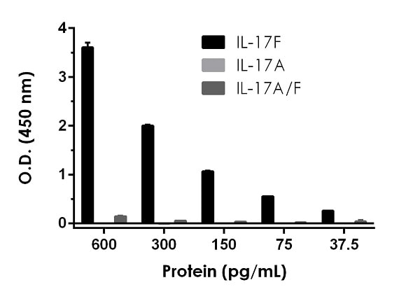 Recombinant IL-17F homodimer, recombinant IL-17A homodimer, and recombinant IL-17A/F heterodimer proteins were measured with this kit.