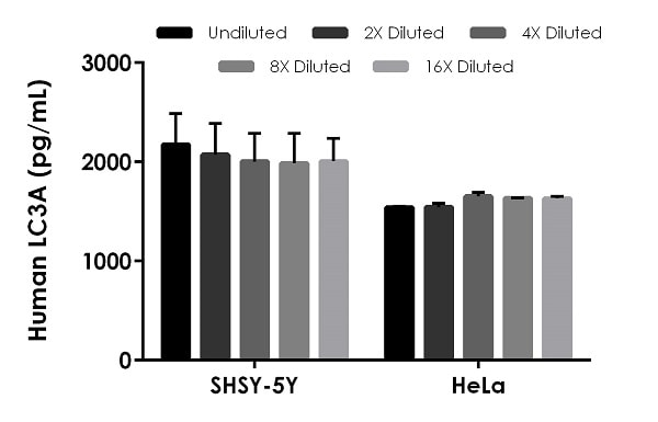 Interpolated concentrations of native LC3A in human SHSY-5Y cell extract based on a 30 µg/mL extract load, and HeLa cell extract based on a 500 µg/mL extract load.