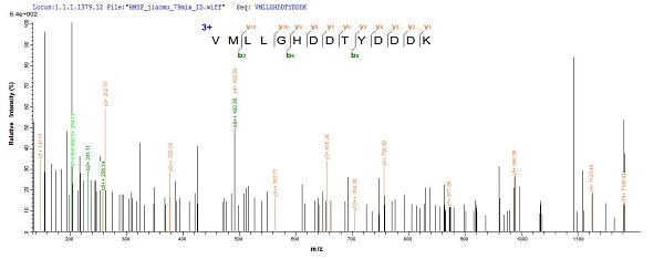 Mass Spectrometry - Recombinant Pectate lyase 1 protein (Tagged) (ab239542)