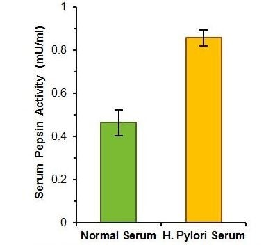 Estimation of pepsinogen activity in pooled normal human serum and single-donor serum from a gastric ulcer patient with confirmed H. Pylori infection (each 10 µl of undiluted serum).