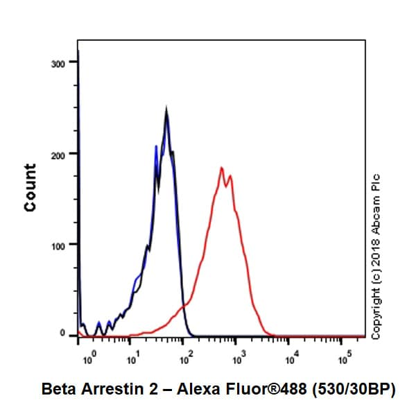 Flow Cytometry - Anti-Beta Arrestin 2 antibody [EPR22073] - BSA and Azide free (ab239791)