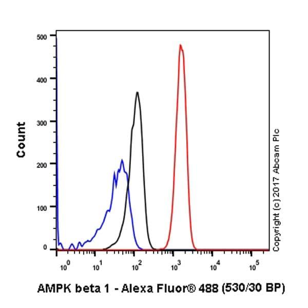 Flow Cytometry - Anti-AMPK beta 1 antibody [Y367] - BSA and Azide free (ab239804)