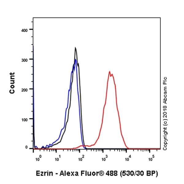 Flow Cytometry - Anti-Ezrin antibody [EP886Y] - BSA and Azide free (ab239832)