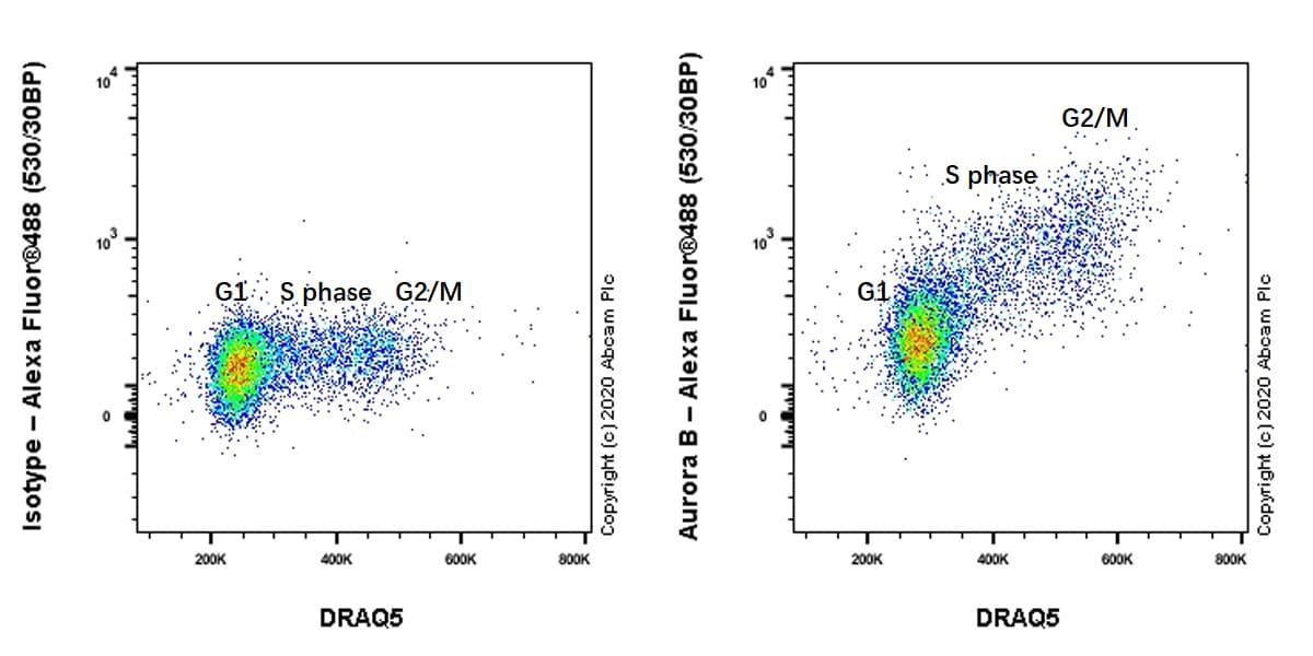 Flow Cytometry - Anti-Aurora B antibody [EP1009Y] - BSA and Azide free (ab239837)