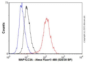 Flow Cytometry - Anti-MAP1LC3A antibody [EP1983Y] - BSA and Azide free (ab239849)