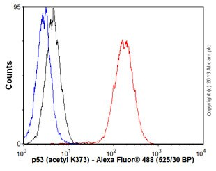 Flow Cytometry - Anti-p53 (acetyl K373) antibody [EP356(2)AY] - BSA and Azide free (ab239856)