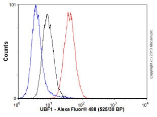Flow Cytometry - Anti-UBF1 antibody [EP2741Y] - BSA and Azide free (ab239866)