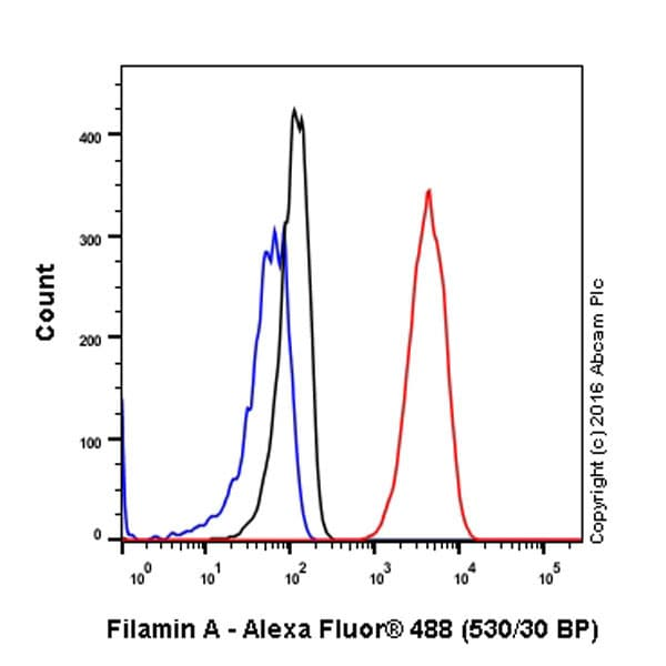 Flow Cytometry - Anti-Filamin A antibody [EP2405Y] - BSA and Azide free (ab239881)