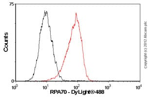 Flow Cytometry - Anti-RPA70 antibody [EPR3472] - BSA and Azide free (ab239890)