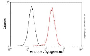 Flow Cytometry - Anti-TMPRSS2 antibody [EPR3861] - BSA and Azide free (ab239905)