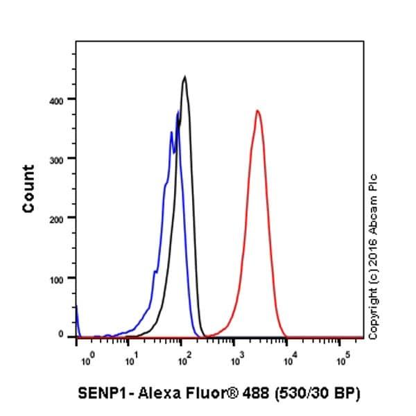 Flow Cytometry - Anti-SENP1 antibody [EPR3844] - BSA and Azide free (ab239937)