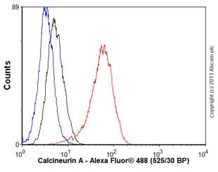 Flow Cytometry - Anti-Calcineurin A antibody [EPR1670(2)] - BSA and Azide free (ab239975)