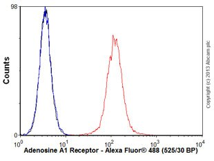 Flow Cytometry - Anti-Adenosine A1 Receptor antibody [EPR6179] - BSA and Azide free (ab239997)