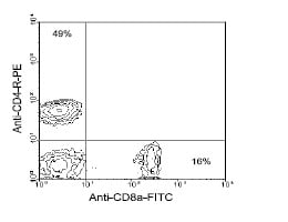 Flow Cytometry - Anti-CD8 alpha antibody [76-2-11] (FITC) (ab24883)
