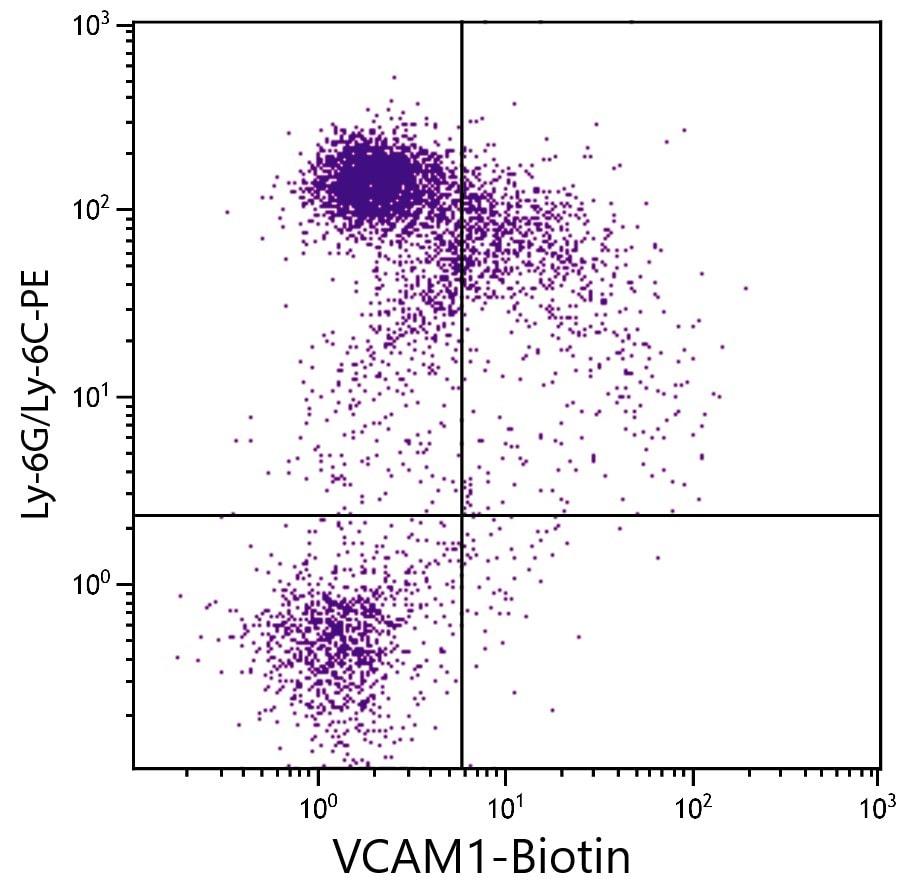 Flow Cytometry - Biotin Anti-VCAM1 antibody [M/K-2] (ab24942)