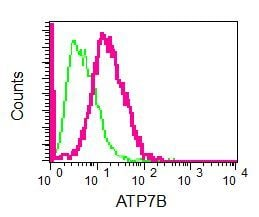 Flow Cytometry - Anti-ATP7b antibody [EPR6794] - BSA and Azide free (ab240011)