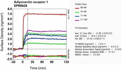 OI-RD Scanning - Anti-ADIPOR1 antibody [EPR6626] - BSA and Azide free (ab240022)