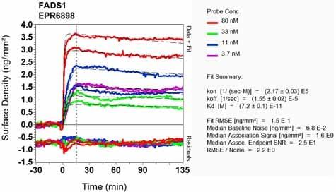 OI-RD Scanning - Anti-FADS1 antibody [EPR6898] - BSA and Azide free (ab240024)