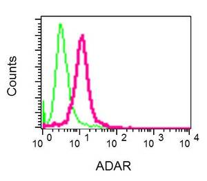 Flow Cytometry - Anti-ADAR1 antibody [EPR7033] - BSA and Azide free (ab240029)