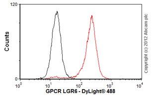 Flow Cytometry - Anti-GPCR LGR6 antibody [EPR6874] - BSA and Azide free (ab240030)