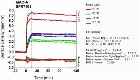 Other - Anti-Monoamine Oxidase A/MAO-A antibody [EPR7101] - BSA and Azide free (ab240031)