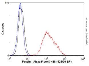 Flow Cytometry - Anti-Fascin antibody [EP5902] - BSA and Azide free (ab240034)