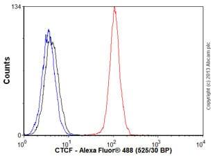 Flow Cytometry - Anti-CTCF antibody [EPR7314(B)] - BSA and Azide free (ab240035)