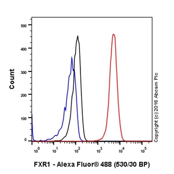 Flow Cytometry (Intracellular) - Anti-FXR1 antibody [EPR7932] - BSA and Azide free (ab240042)