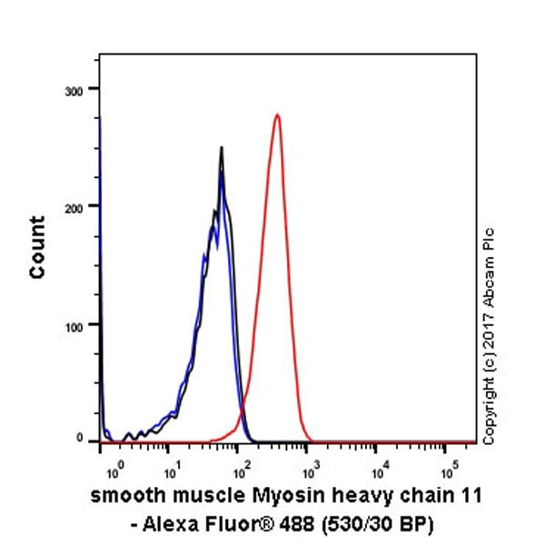 Flow Cytometry - Anti-smooth muscle Myosin heavy chain 11 antibody [EPR5336(B)] - BSA and Azide free (ab240069)