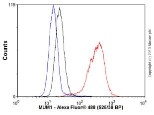 Flow Cytometry - Anti-MUM1 antibody [EP5699] - BSA and Azide free (ab240071)
