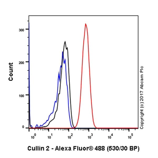 Flow Cytometry - Anti-Cullin 2/CUL-2 antibody [EPR3104(2)] - BSA and Azide free (ab240149)