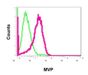 Flow Cytometry - Anti-MVP antibody [EPR13227(B)] - BSA and Azide free (ab240184)
