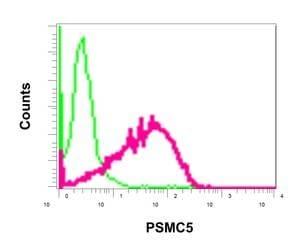 Flow Cytometry - Anti-PSMC5 antibody [EPR13565(B)] - BSA and Azide free (ab240208)