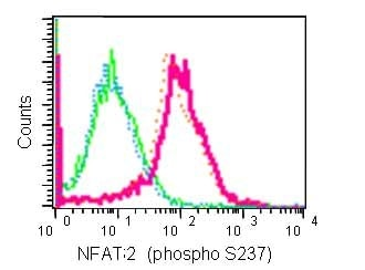 Flow Cytometry - Anti-NFAT2 (phospho S237) antibody [EPR2377(N)] - BSA and Azide free (ab240262)