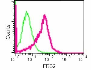 Flow Cytometry - Anti-FRS2 antibody [EPR14724] - BSA and Azide free (ab240269)