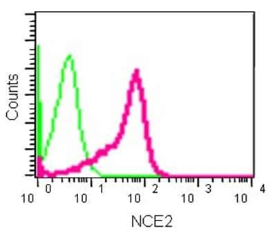 Flow Cytometry - Anti-NCE2/UBE2F antibody [EPR12932] - BSA and Azide free (ab240291)