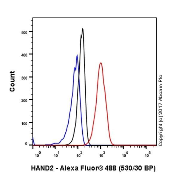 Flow Cytometry - Anti-HAND2 antibody [EPR19451] - BSA and Azide free (ab240353)