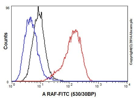 Flow Cytometry - Anti-A RAF antibody [EPR16208] - BSA and Azide free (ab240354)