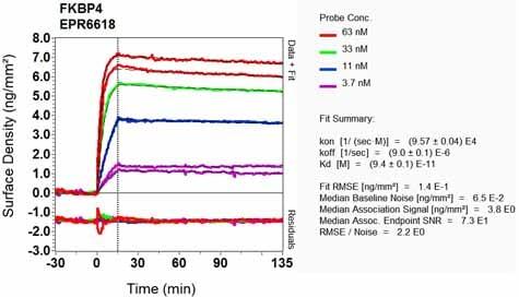 OI-RD Scanning - Anti-FKBP52 antibody [EPR6618] - BSA and Azide free (ab240535)