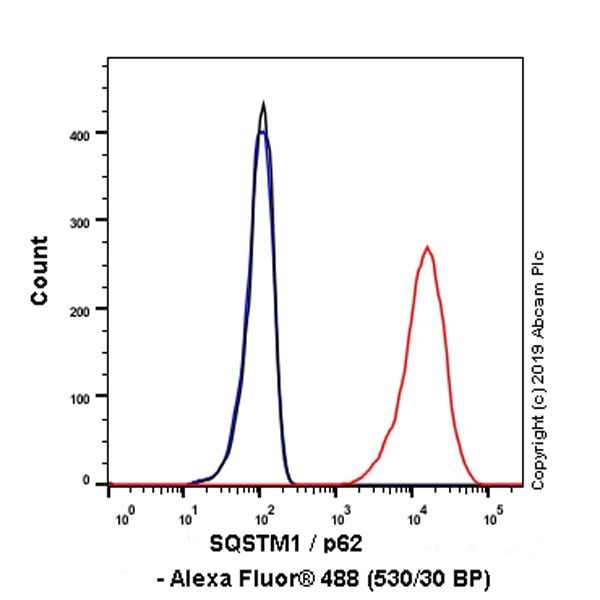 Flow Cytometry - Anti-SQSTM1 / p62 antibody [EPR23101-103] (ab240635)