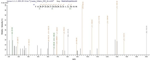 Mass Spectrometry - Recombinant Human Endostatin/COL18A1 protein (His tag) (ab240772)