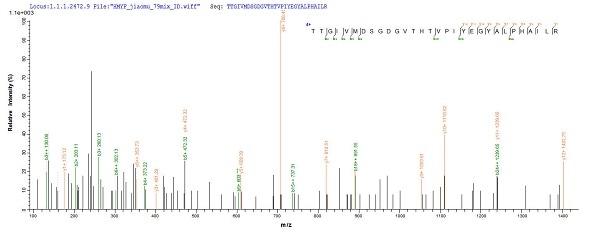 Mass Spectrometry - Recombinant Human beta Actin protein (His tag) (ab240844)