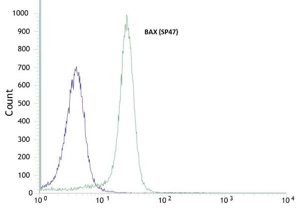 Flow Cytometry - Anti-Bax antibody [SP47] - BSA and Azide free (ab240930)
