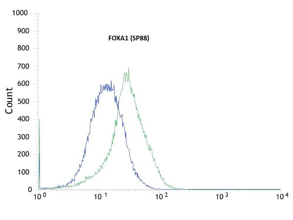 Flow Cytometry - Anti-FOXA1 antibody [SP88] - BSA and Azide free (ab240935)