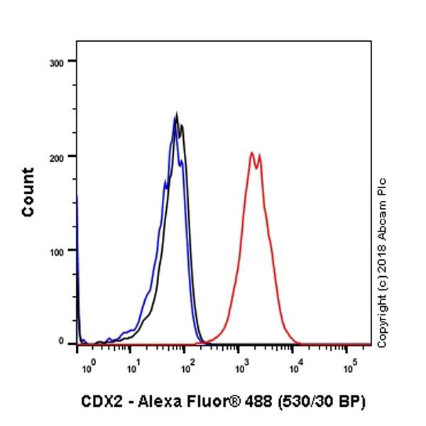 Flow Cytometry - Anti-CDX2 antibody [SP54] - BSA and Azide free (ab240936)