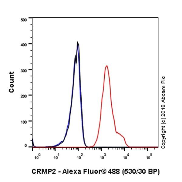 Flow Cytometry - Anti-CRMP2 antibody [EPR7792] - BSA and Azide free (ab240952)
