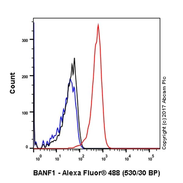 Flow Cytometry - Anti-BANF1/BAF antibody [EPR7668] - BSA and Azide free (ab240953)